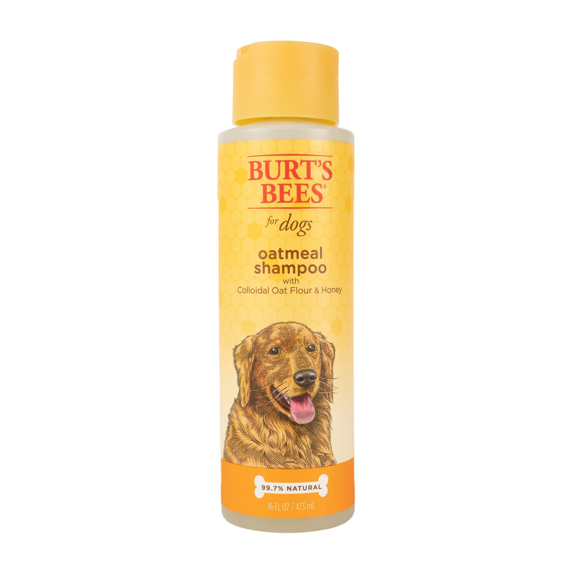 Burts Bees - Burt's Bees Oatmeal Dog Shampoo, 16 fl. oz. | Petco
