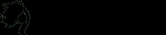 Beauty Supply Usa's logo