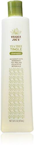 Trader Joe'S - Tea Tree Tingle Shampoo with Peppermint, Tea Tree and Eucalyptus