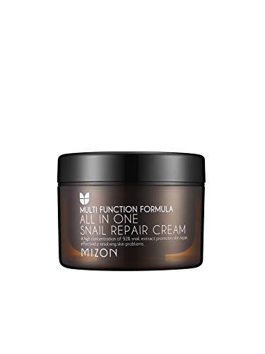 Mizon - [MIZON] All in One Snail Repair Cream (120ml)