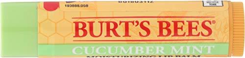 Burts Bees - BURTS BEES Cucumber Mint Lip Balm, 0.15 OZ