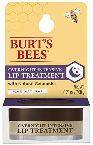 Burts Bees - 100% Natural Overnight Intensive Lip Treatment