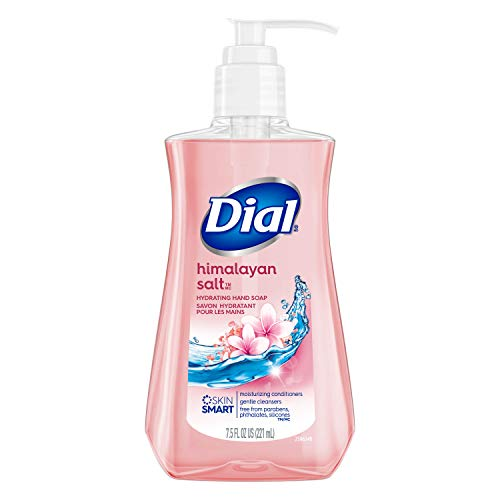 Dial - Dial Himalayan Pink Salt & Water Lily Hand Soap with Moisturizer 7.5 Oz. (Pack of 4)