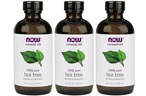 Now Foods - Now Foods: Tea Tree Oil, 4 oz