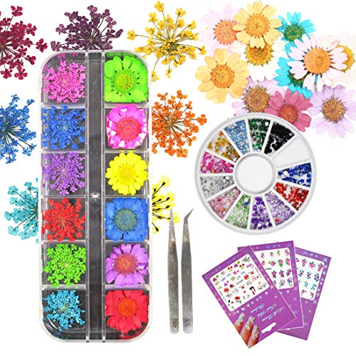 Bieawg - Dried Flower Nail Art 12 Color Rhinestone Gems Charms Decoration Accessories Water Slide Sticker Decal Kits with Tweezers For Manicure Nail Supply (Bi018A)