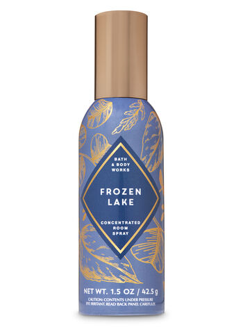 Bath & Body Works - Frozen Lake Concentrated Room Spray